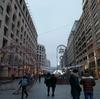 アルメニアの旅 15日目【ジョージア、トビリシ、アルメニア、エレバン、バス移動、HOSTEL VAGASY、ドミトリー】
