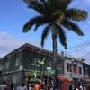 メデジンから飛行機移動。ついに、ジャマイカ上陸!!🇯🇲