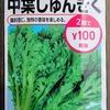 【栽培失敗】「春菊」の水耕栽培を始めました。種蒔きシーズン前の隙間期間で育ててみます