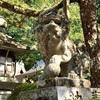 鷺森神社の狛犬、チビ付き。