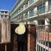 受験本番まで後17日! 慶應中等部を見に行って来ました