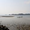 波よけの築港遺跡に水温む