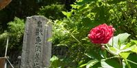 漢字のおもしろさを外国人に伝える