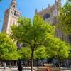 スペイン10日間の旅【6】セビリア編~カテドラル、セビリア美術館、ムリーリョ生家