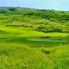 無量の池(山形県鶴岡)