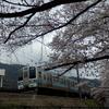 【鉄道写真】JR東日本211系中央本線