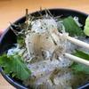 大阪府泉南郡にある岬 丘の上食堂で食べるダブルしらす丼と犬鳴ポーク丼