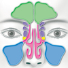 広長舌相の謎:瞑想実践の科学1