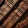 本の魅力について