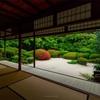 京都・一乗寺 - 初夏の花咲く詩仙堂