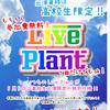 5/5(祝)のLive Plantはちょっと特別!