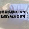 富士山の日!富士宮朝霧高原のミルクランドで動物と触れ合おう!