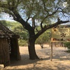 カバンゴの伝統がいかに未だに残っているかがわかった日