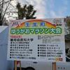 壬生町ゆうがおマラソンでゲットしたポケモン!