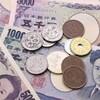 奄美大島でかかったお金をまとめてみた(2泊3日) ~番外編~