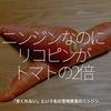 482食目「ニンジンなのにリコピンがトマトの2倍」ー京くれないーという名の宮崎県産のニンジン