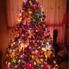 ユーコンで迎える初めてのクリスマス