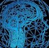【創造性を鍛える】ジョン・J・レイティ『脳を鍛えるには運動しかない!』(NHK出版) #43