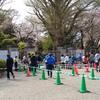 新宿御苑の桜を観て来ました!