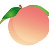 【ピーチ・ジョン】公式通販サイト(PEACH JOHN)で買い物するなら、ポイントサイト経由がお得!