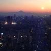 【バツイチ子持ち男性Lさん㉚】東京タワーに歩いて登りました【婚活デート14回目】