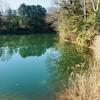 天神池(三重県松阪)