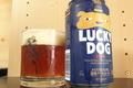 【クラフトビール】和あかね キャプテンクロウ 京都麦酒 蔵のかほり ラッキードッグ 北の星流 インドの青鬼
