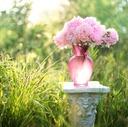 blissflower-日常に至福のひとときを