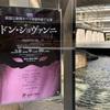 初めてのオペラ鑑賞!新国立劇場オペラ研修所終了公演「ドン・ジョヴァンニ」 #新国立劇場 #オペラ