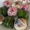春色の手鞠鮨