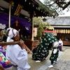 ちょっと洗練されていた奈良町の秋祭り。町場の商人の心意気があって、どことなく小綺麗な感じがしました。