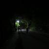 掬星台(日本三大夜景)