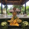 なぜ?バリニーズ? Pijat Bali Terataiの魔女の秘密