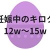 妊娠中のキロク【12w~15w】