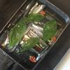 【サビキで釣った魚を食べよう その②】 自家製オイルサーディンを作ってみた