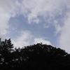 雨は止んだ♪牛臥山公園へお散歩に行こう