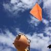 凧を揚げる金曜日