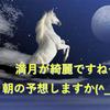 【午前競馬】未勝利、新馬戦の注目馬