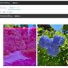 はてなブログで投稿する写真の色が変な話。