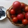 トマトとトマト