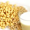 人類を救う『大豆ファミリー』栄養学&【さようならダイエット】定番入りレシピ選
