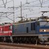 第381列車 「 甲227 JR貨物 EH800-11号機の甲種輸送を狙う 」