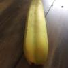 バナナにも双子が存在した!?