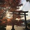 【下野・壬生・上川三町/御朱印巡り】訪問した神社とお寺のまとめ