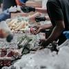【無償で食料もらえんの⁉︎ 】大井町で「しながわフードバンク」ていう食料支援やってたゾ