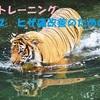 水中トレーニングをカンタン楽しく♪  その②ヒザ痛改善のための