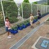 2年生:野菜に水やり