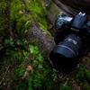 カメラ初心者が購入前に押さえておきたい5つのポイント