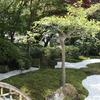【鎌倉いいね】鎌倉 浄妙寺の枯山水庭の美しさ。