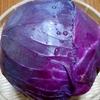紫玉ねぎの成長スピード♪